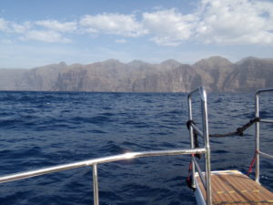 Whale Watching Los Gigantes Teneriffa